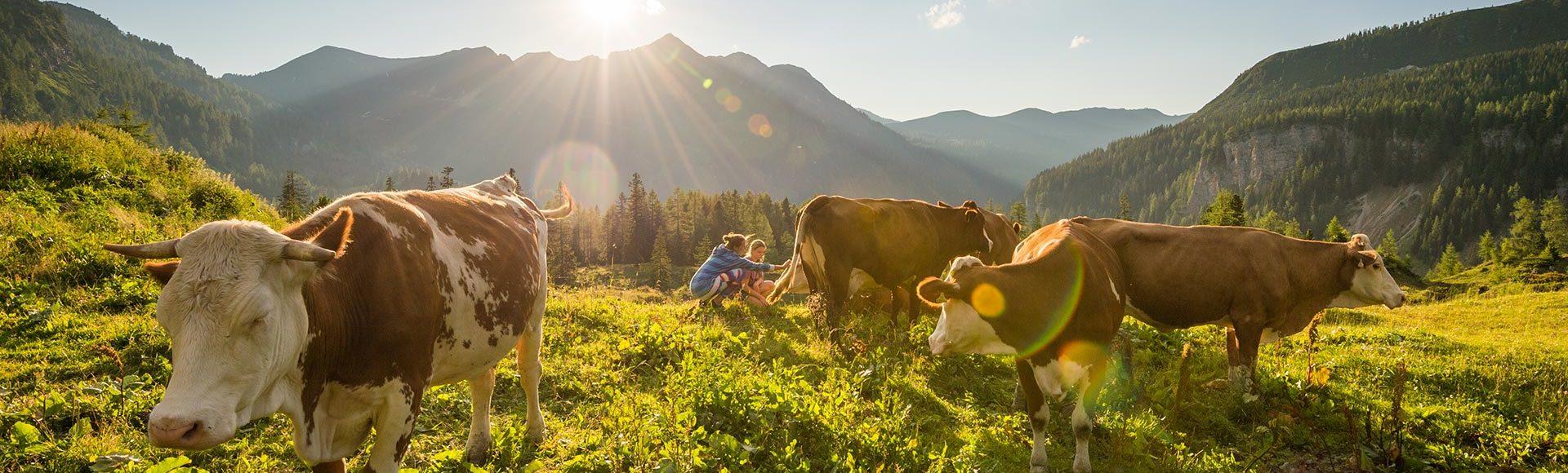 Sommerurlaub Obertauern Salzburg 2